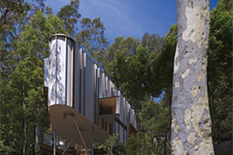 Last year winner, the Burridge-Read Residence by David Boyle Architect. Photography: Brett Boardman.