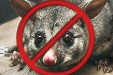 PossOff pest protection