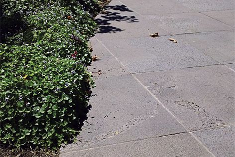 Landscape-grade bluestone - hardwearing and can be used for pavers, feature walls or water features.