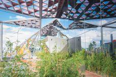 202020 Vision increasing urban green space