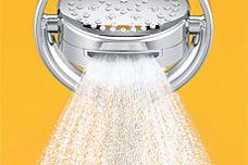 Kohler Flipside hand shower