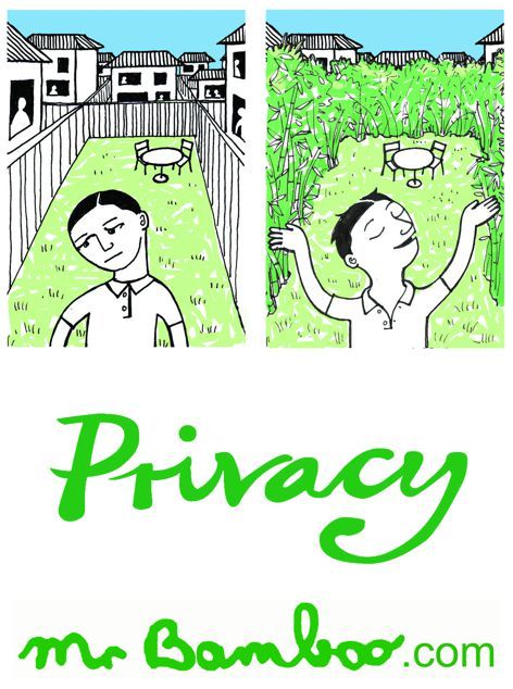 Privacy screening from Mr Bamboo